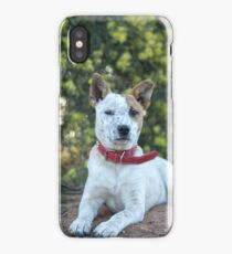 """Buster"" iPhone Case/Skin"