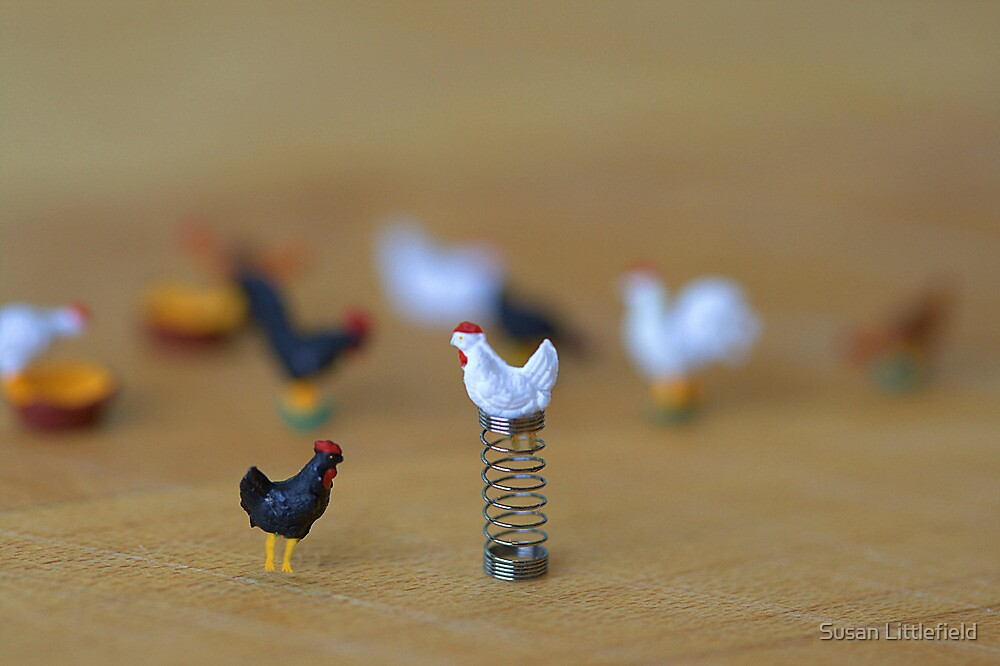 The barnyard squabble took an ugly turn when Henny taunted, 'you're no spring chicken yourself! by Susan Littlefield