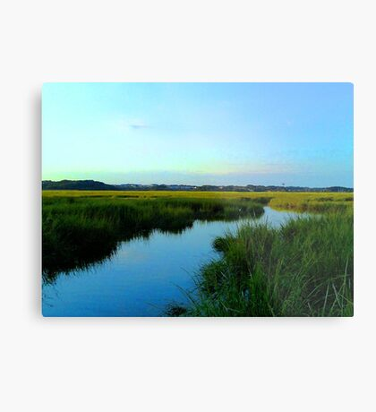 Cheesequake River Metal Print