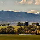 Blue Silos by Barb Miller