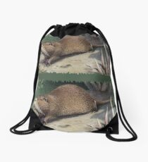 Painting of The Coypu, also known as the River Rat or Nutria.  Drawstring Bag