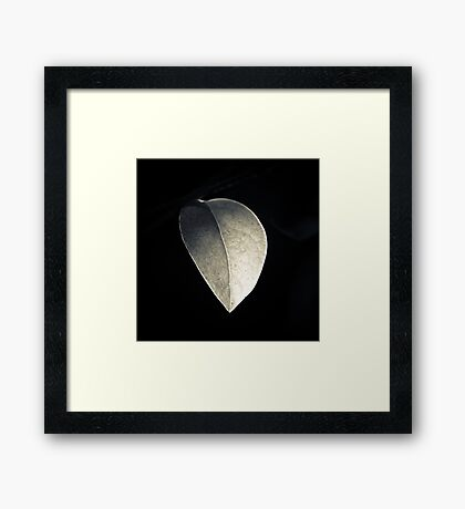 The Only One  Framed Print