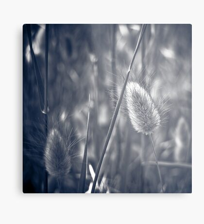 Amidst  the Grass  Metal Print