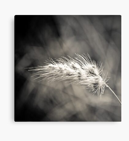 Blown Metal Print