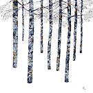 Winter Trees IV by RochelleMc