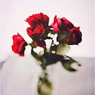 Red roses by Jessica Sharmin