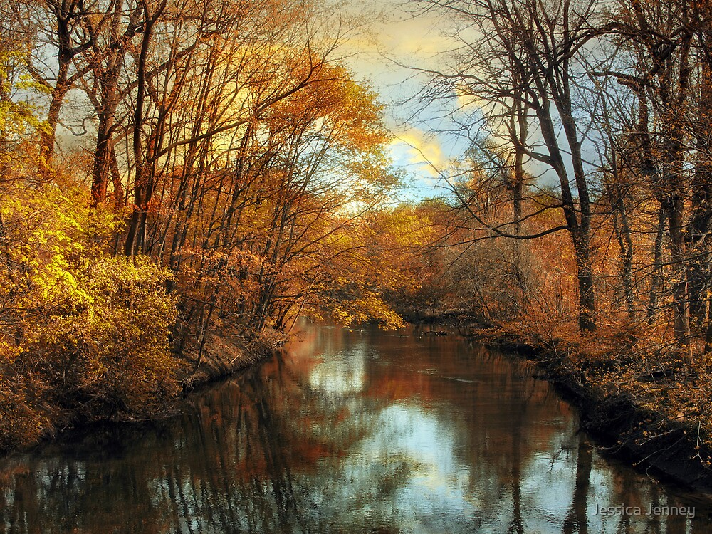 Autumn Lights by Jessica Jenney