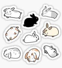 Bunny Rabbit Stickers Sticker