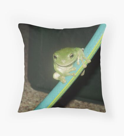 Let's Slide Down the Hose Throw Pillow