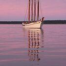 Sunset Cruise von autumnseasphoto