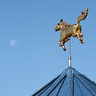 Golden Horse and Moon by kinz4photo