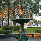 Savannah Fountain by kinz4photo