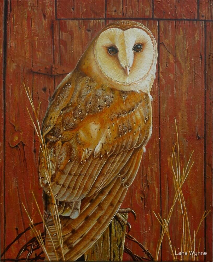 Barn Owl by Lana Wynne