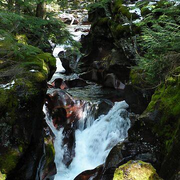 Avalanche creek 1 by Borror