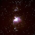 M42 - The Great Orion Nebula by Todd Weeks