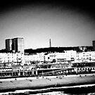 Brighton by Michael  Addison