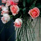 Rosas.... by cieloverde