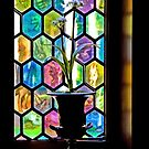 Stained Glass Window??????? Look again by deahna