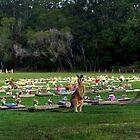 Besucher am Lawn Cemetery von myraj