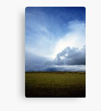 Coming Rain, Mallee 2 Canvas Print