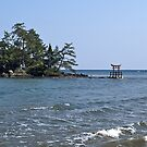 Shrine Island on the Noto Peninsula, Japan. by johnrf