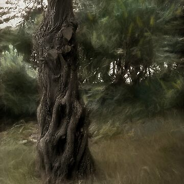 Painted Wind in the Cedar Unsigned by waynedking