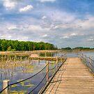 Walking on Water by ECH52