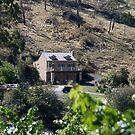 Yileena Park Estate by Di Jenkins