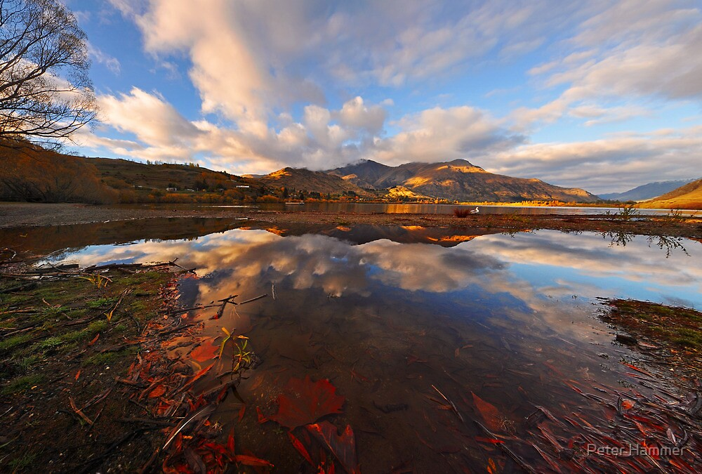 Lake Hayes by Peter Hammer