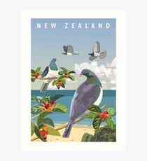 Lámina artística Kereru, Nueva Zelanda