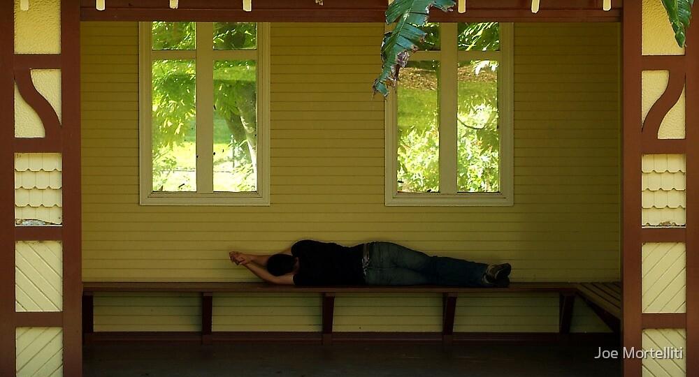 Sleepy Sunny Afternoon by Joe Mortelliti