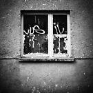 Window by smilyjay