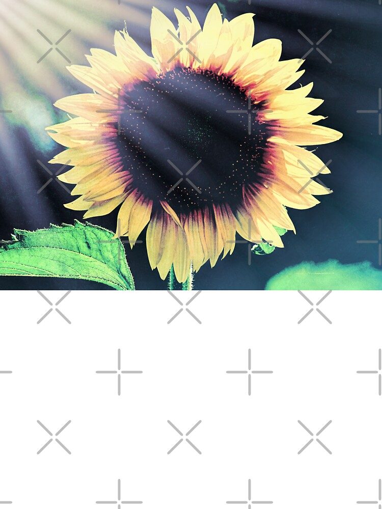Sunflower Yellow Flower Cottage Kitchen Art Modern Country Matted Picture A586