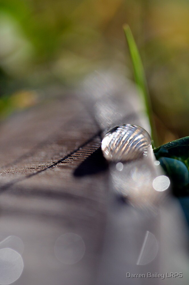 The lonely water drop by Darren Bailey LRPS