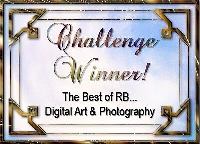 Best of RB Challenge Winner by rocamiadesign