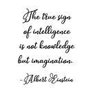 Das wahre Zeichen der Intelligenz - Einstein von Quotation  Park