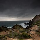 Cape Shank Lighthouse by Andrew Wilson