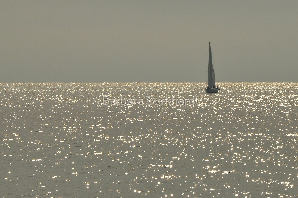 Sequence on Moreton Bay Qld Australia by Barbara Burkhardt