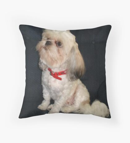 The Red Collar Throw Pillow