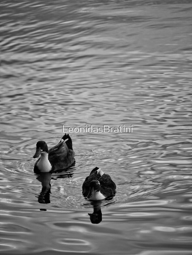 Ducks in a Pond by LeonidasBratini