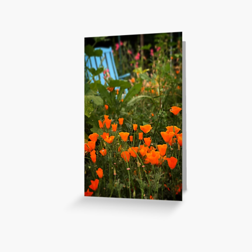 California Poppies In The Garden Greeting Card