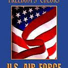 U.S. Air Force Freedom's Colors by George Robinson