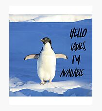 Hello Ladies I'm Available, penguin t-shirt Photographic Print