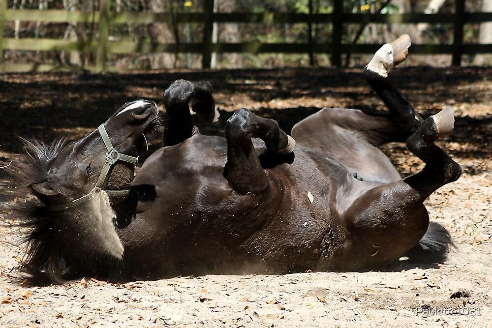 Dark Brown Horse Lying Down by Paulette1021