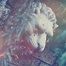 Haunted Lion by Nick Nygard
