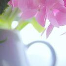 Pastel still life by aMOONy