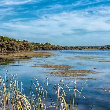 Lake Joondalup, Western Australia by decoaddict