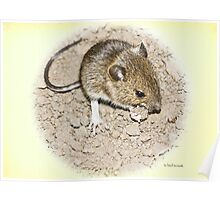 Woodmouse Poster