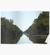 Tranquil Beauty Poster
