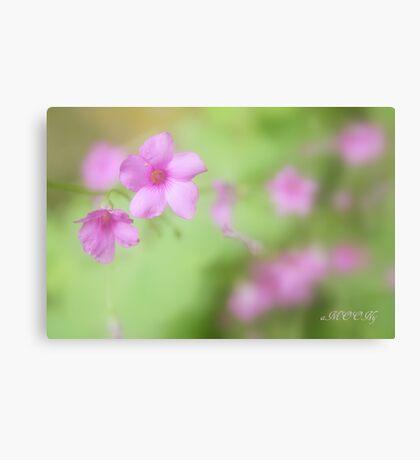 Im the garden 5 Canvas Print